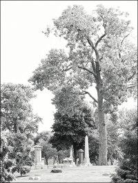 Graceland Cemetery (II)