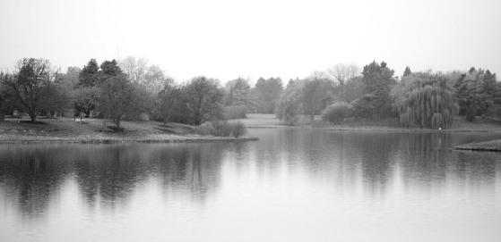 Lagoon (IV)
