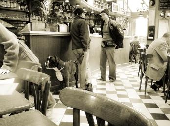 Marais Bar, Spring 2007, 2p