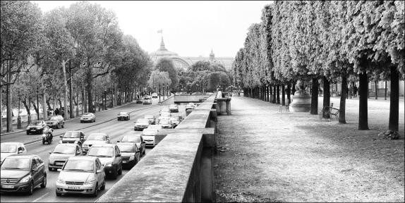Circulation Tuilleries